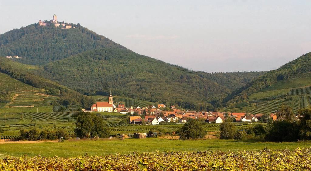 Orschwiller (67600)