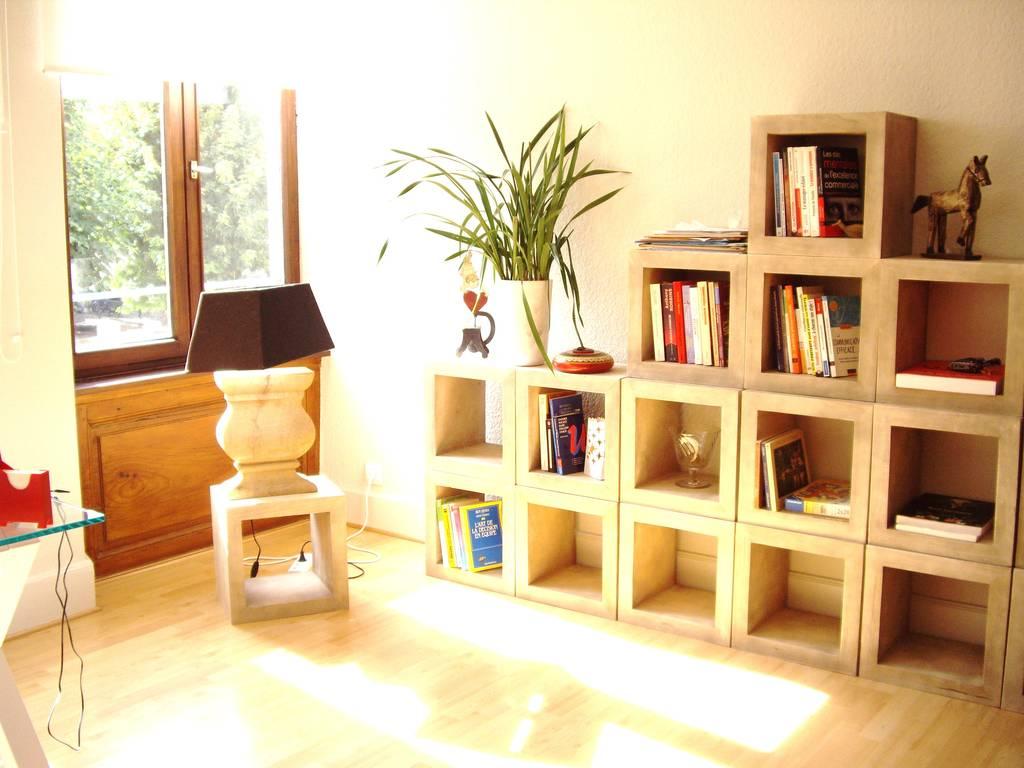 Location meubl e appartement 2 pi ces 45 m strasbourg 67 - Location appartement meuble strasbourg ...
